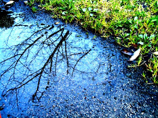 【アートギャッベ】雨の季節に思い出すこと