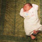ウールじゅうたんの特性2