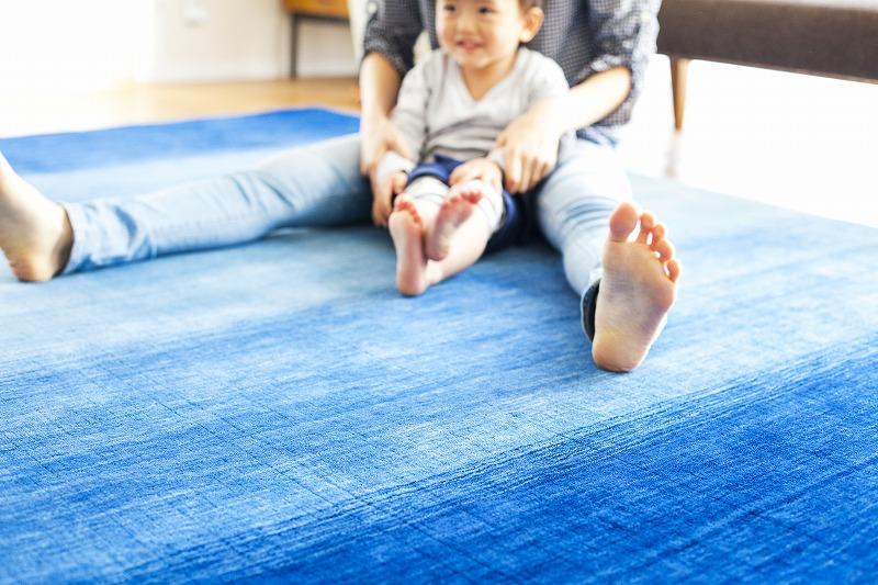 青のハグみじゅうたんの上で親子が座っている