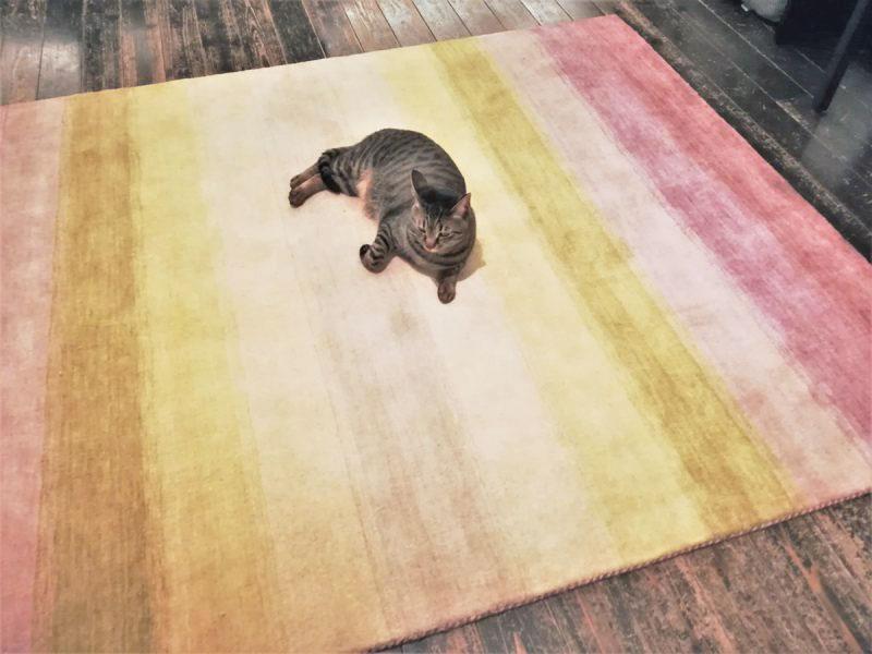 ハグみじゅうたん ER6189 藤の花をイメージしたグラデーションの絨毯