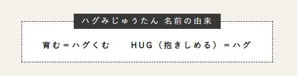 ハグみじゅうたんの名前の由来 育む=ハグくむ HUG(抱きしめる)=ハグ